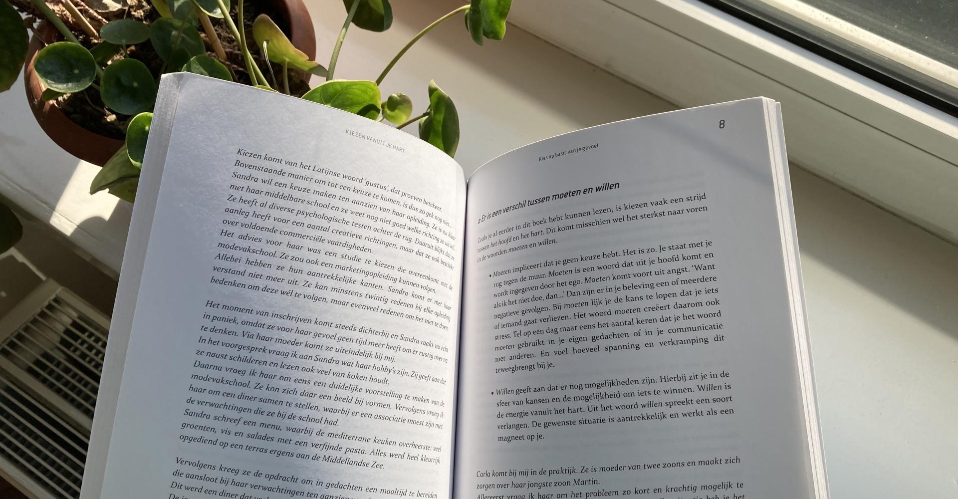 Inkijk, boek, Kiezen vanuit je Hart, Albert Sonnevelt