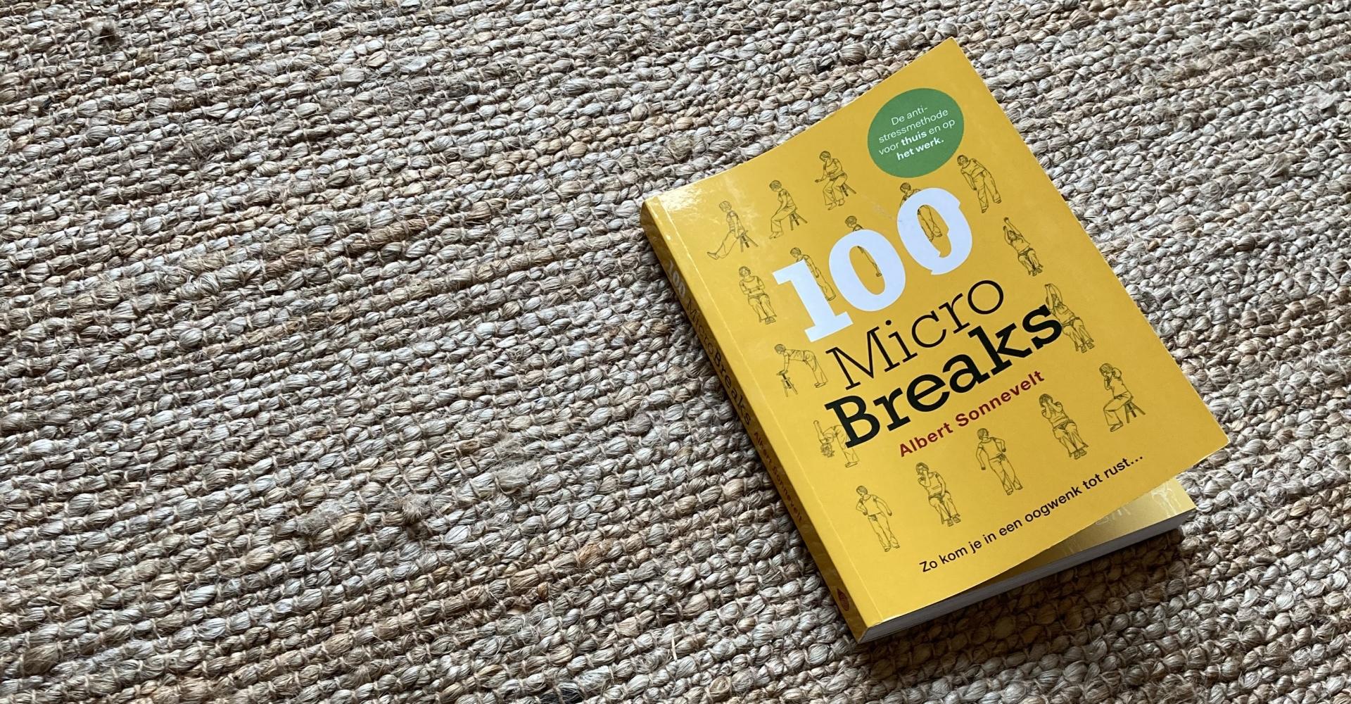 Microbreaks, boek, Albert Sonnevelt