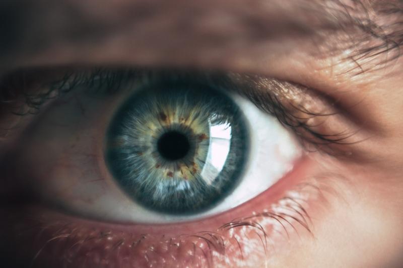 oog, focus, aandacht, zien