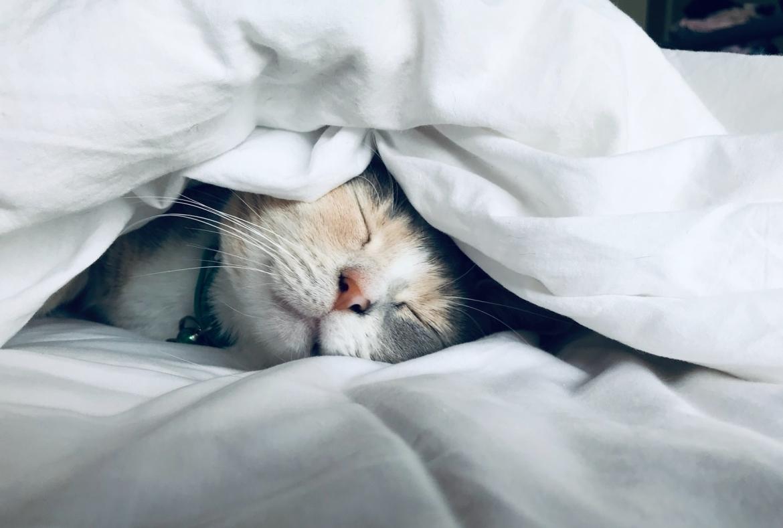 rust, herstellen, herstelmomenten, slaap, relaxen