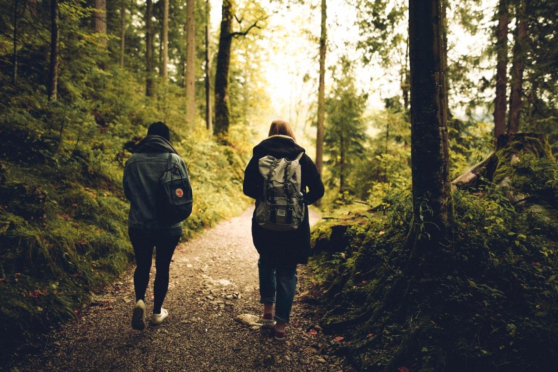 wandelen, lopen, vrienden, praten, natuur, bewegen