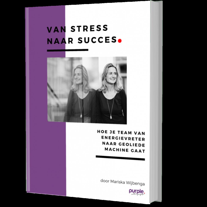 Ebook Van Stress naar Succes