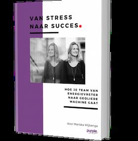 Purple Leiderschapsontwikkeling ebook Van stress naar succes