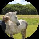 paard contact puurlijk