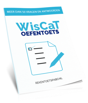 Oefentoets WiscCat/Pabo