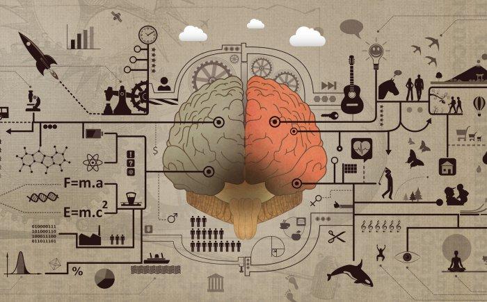 De invloed op je brein
