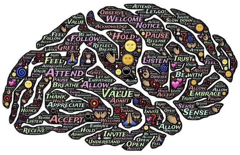 Conversie optimalisatie cursus review - brain-min