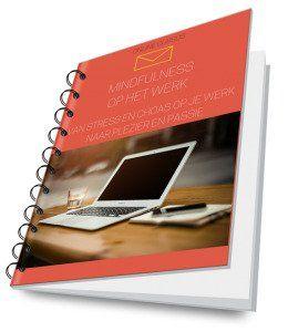 Mindfulness voor het dagelijkse leven review - cursus cover 2