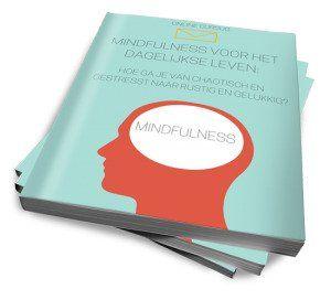Mindfulness voor het dagelijkse leven review - cursus cover
