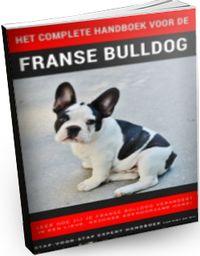 franse bulldog handboek review ervaring
