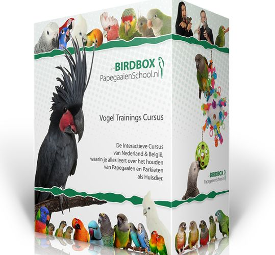 birdbox paketten prijzen