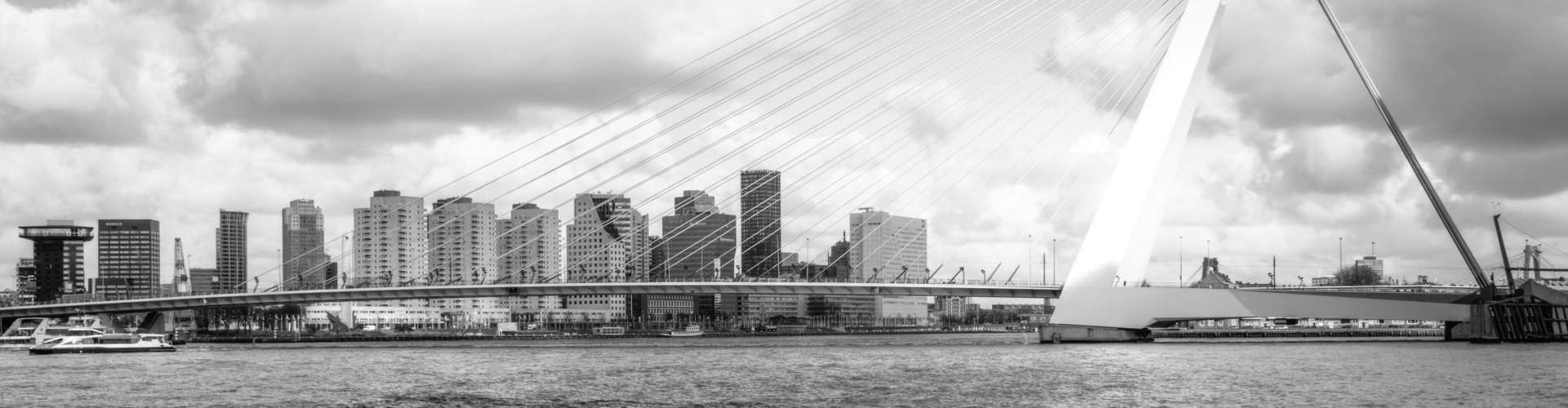 Rotterdamse Pakketten Skyline Erasmusbrug