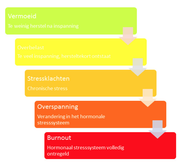 Fasen burnout