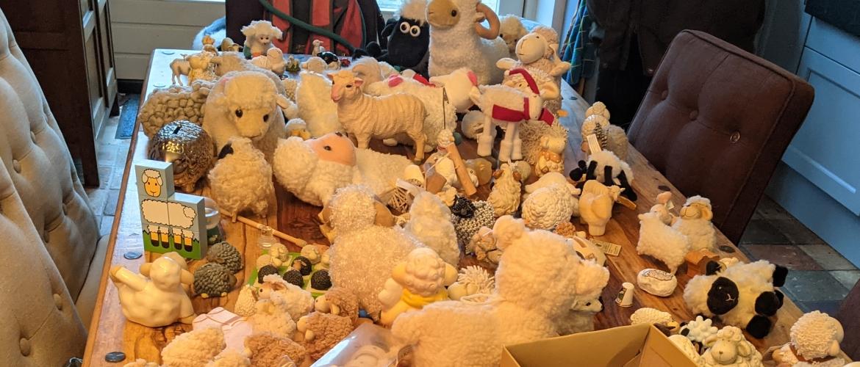 Van schapen drijven naar schapen sparen
