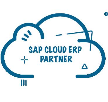 SAP Cloud ERP Partner for SAP S/4HANA Cloud | RISE with SAP