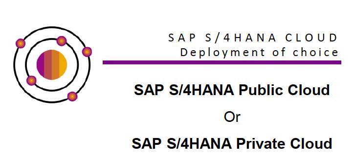 Deployment Options SAP S/4HANA en RISE with SAP