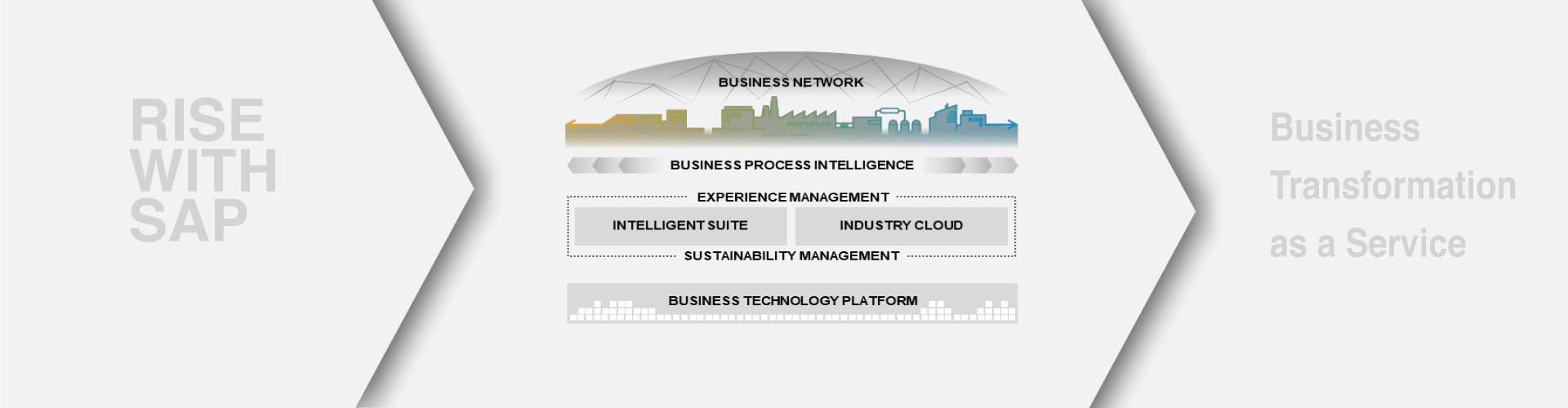 RISE with SAP | SAP S/4HANA Cloud offering