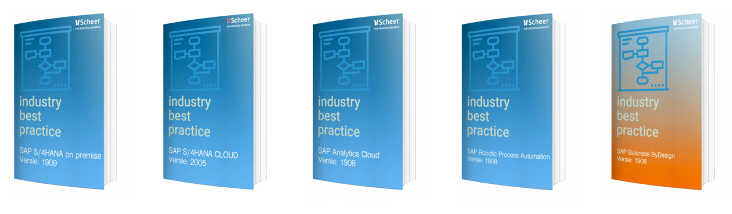 SAP ERP Industry Best Practices