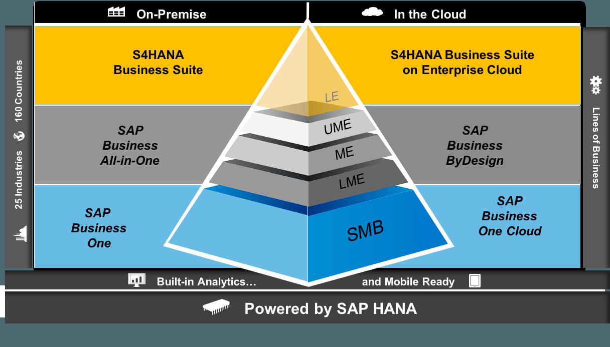 sap-business-suite-models