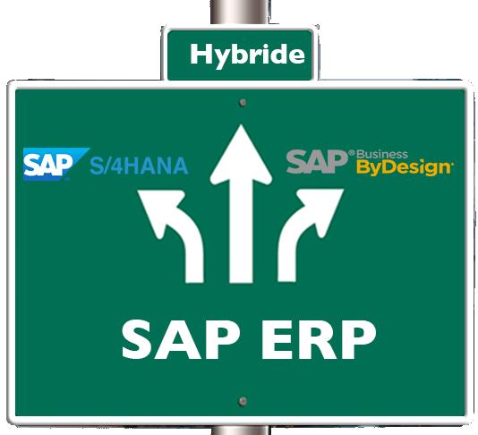 Kiezen uit SAP Cloud ERP