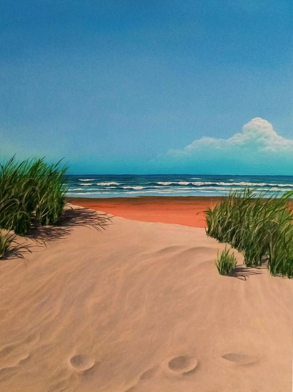zee-strand-en-duingras.