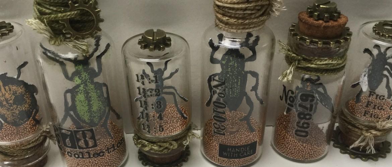 Etcetera Tag #4: Entomology