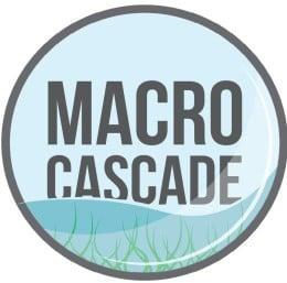 macrocascade