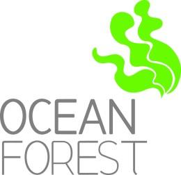 ocean-forest