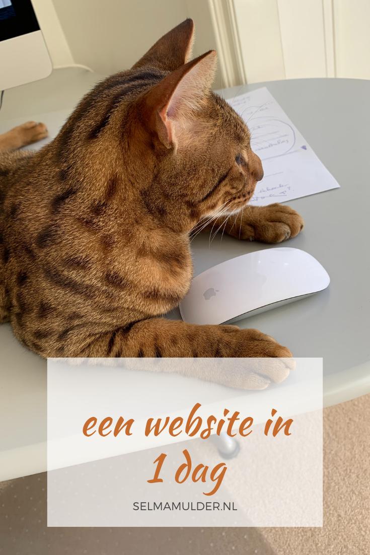 Met deze handleiding van Marketing Zonder Moeite is het een koud kunstje om snel een website te maken. Bijvoorbeeld omdat je een speciale aanbieding hebt die je online wilt zetten met een eigen URL. Download de sales-page template.