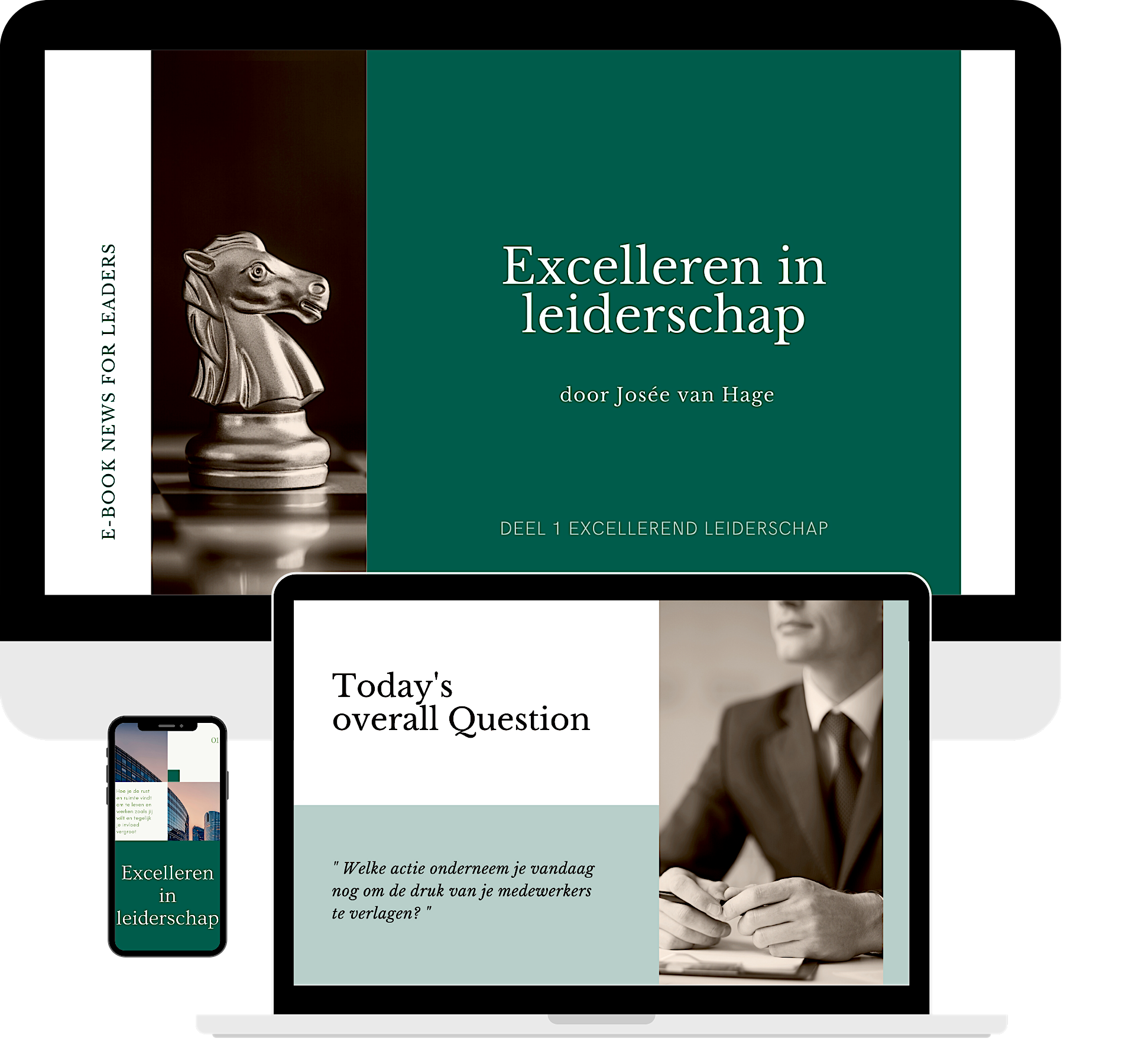 download e-Book excelleren in leiderschap