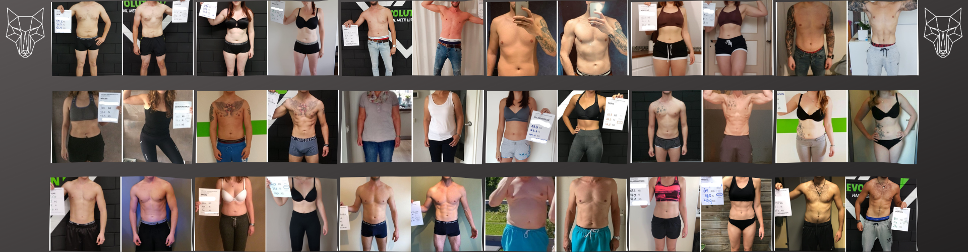 maximum shape resultaten banner
