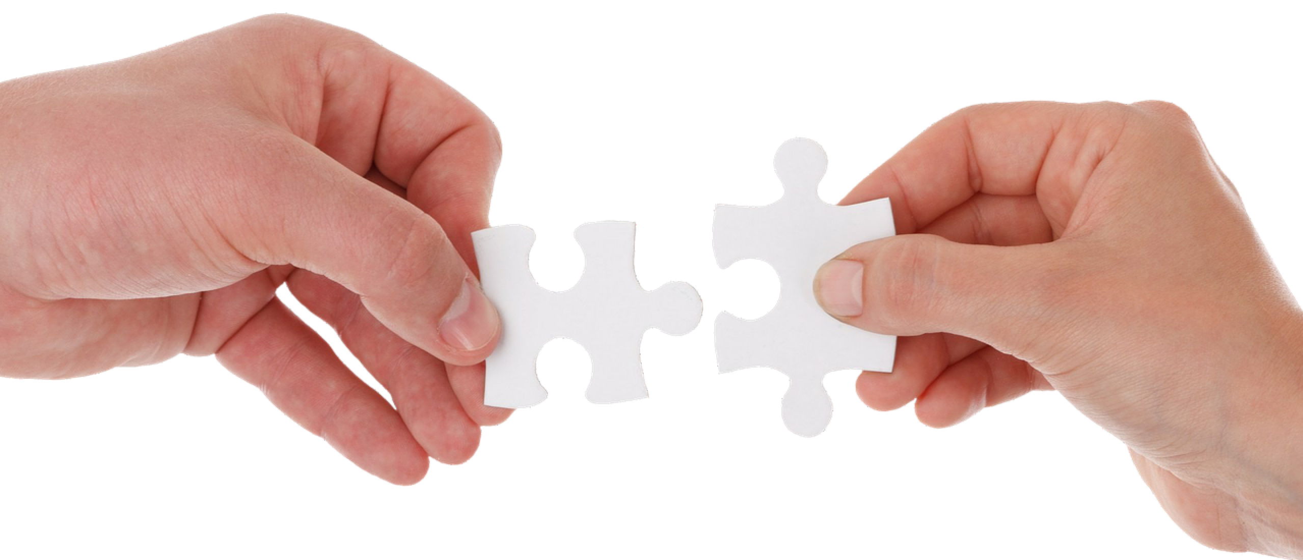 Verschil VA, Online Business Manager en Integrator