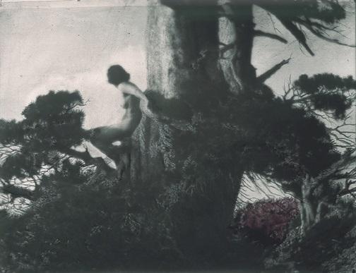 Anne Brigman The Pine Sprite