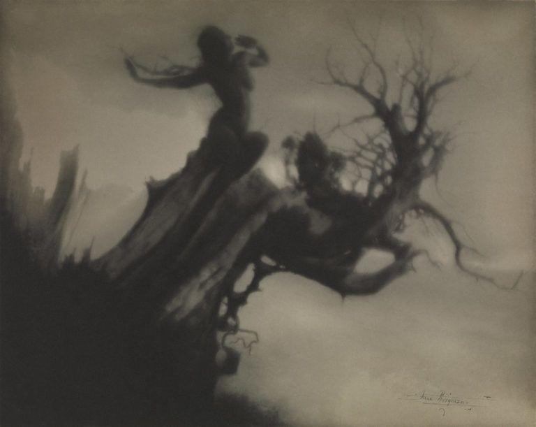 Anne Brigman The Storm Tree