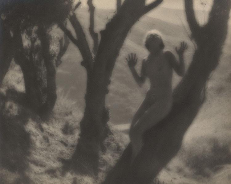 Annie Brigman The Tree Frog