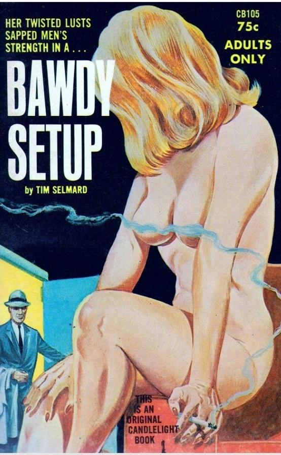Bawdy Setup Adult Cover