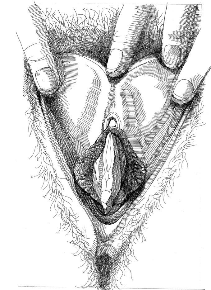 betty dodson vagina art