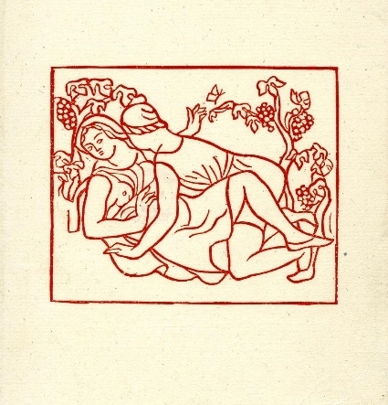 Cautious woman and man making love amongst vines