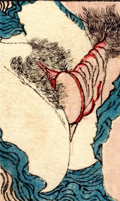 close up intercourse art