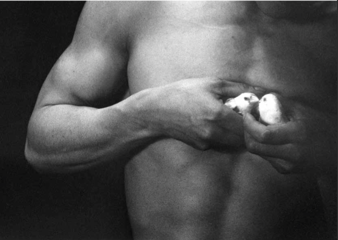 Eikoh Hosoe nude with birds
