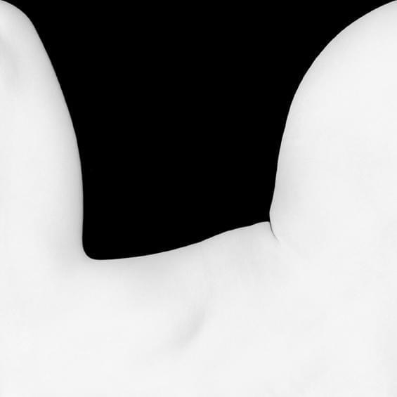 Eric Marrian body shapes