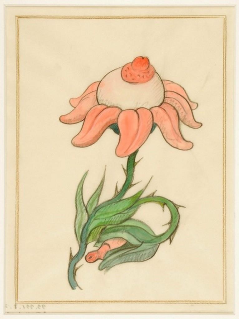 tomi ungerer erotic flower