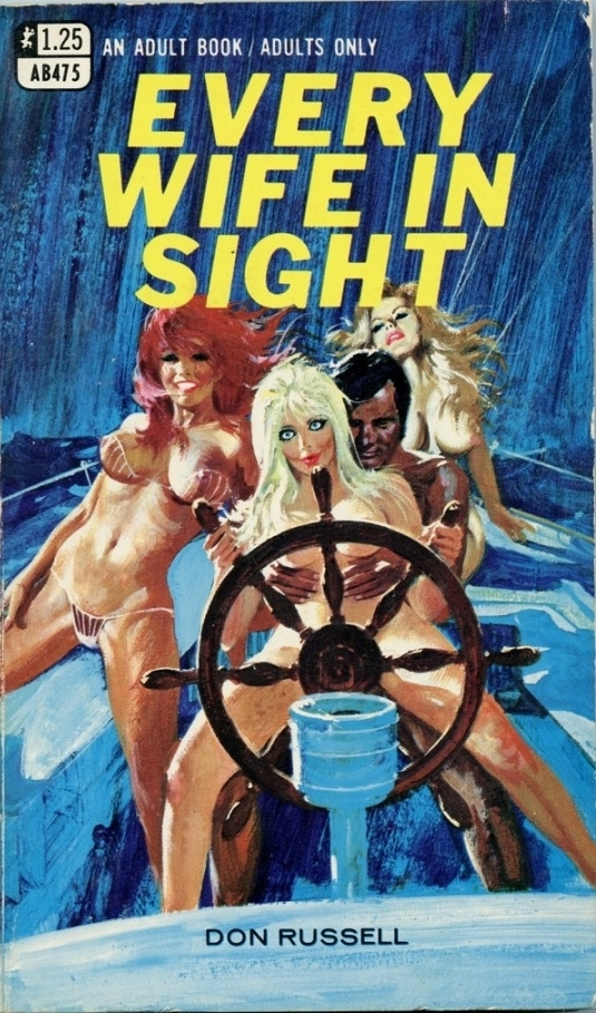 Every Wife in Sight adult cover