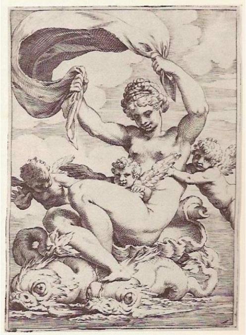Galatea Venus carracci