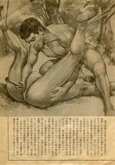 gay Gekko Hayashi