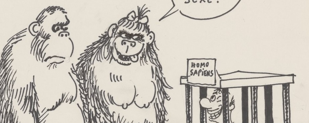 Georges Wolinski and His Sharp Cartoons on Sex, Politics, and Society