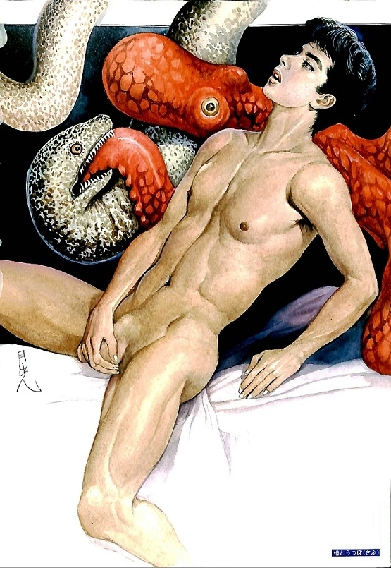 Hayashi Gekko octopus