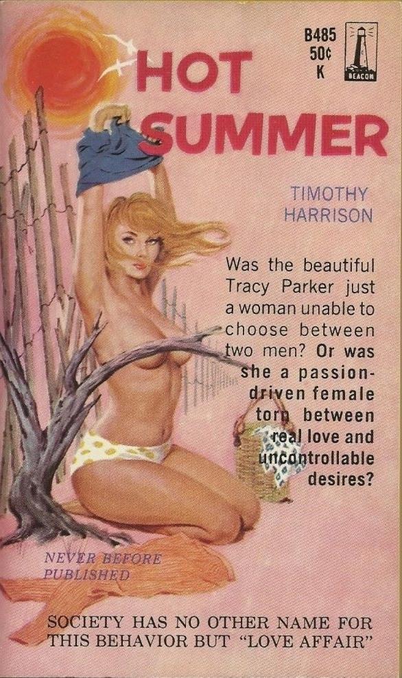 Hot Summer Pulp Novel