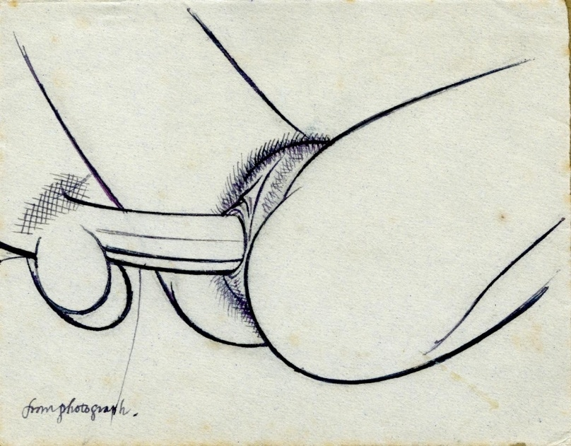 Intercourse close-up drawn from a photograph by Eric gill