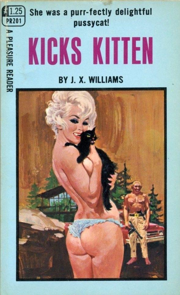 Kicks Kitten Pulp Novel